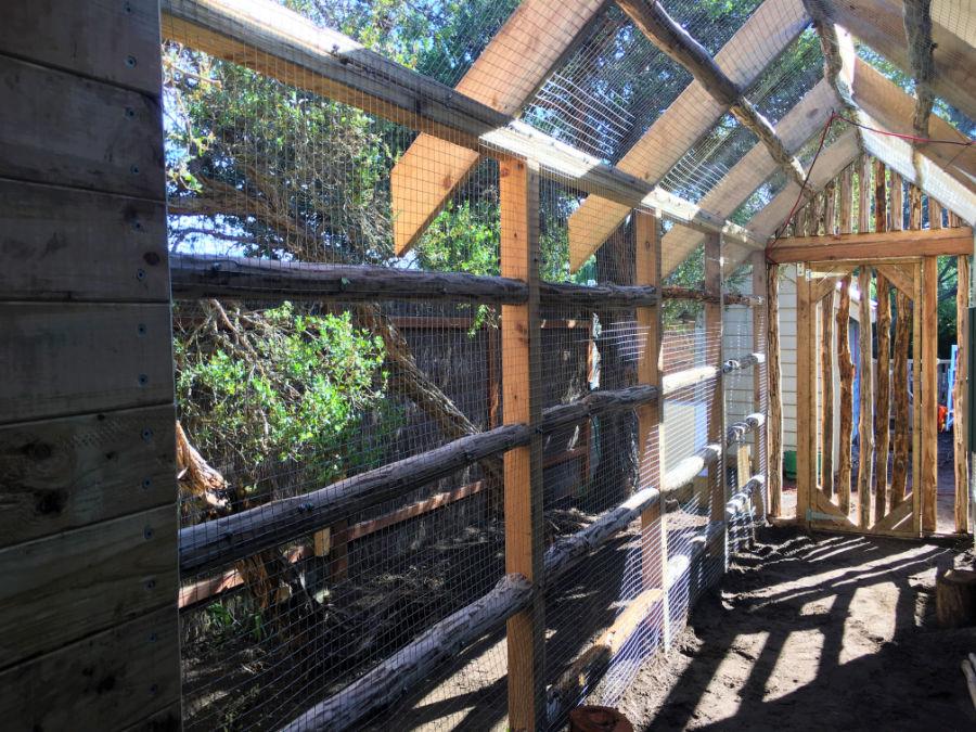 chicken coop inside