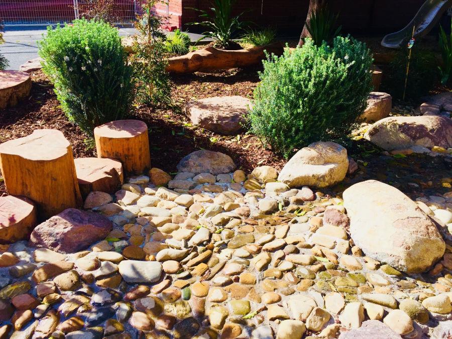 creek bed plants