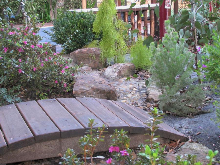small bridge bushes